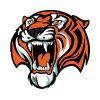 Амурские Тигры Хабаровск