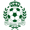 Дессель Спорт