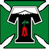 Депортес Темуко