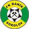 Баник Соколов